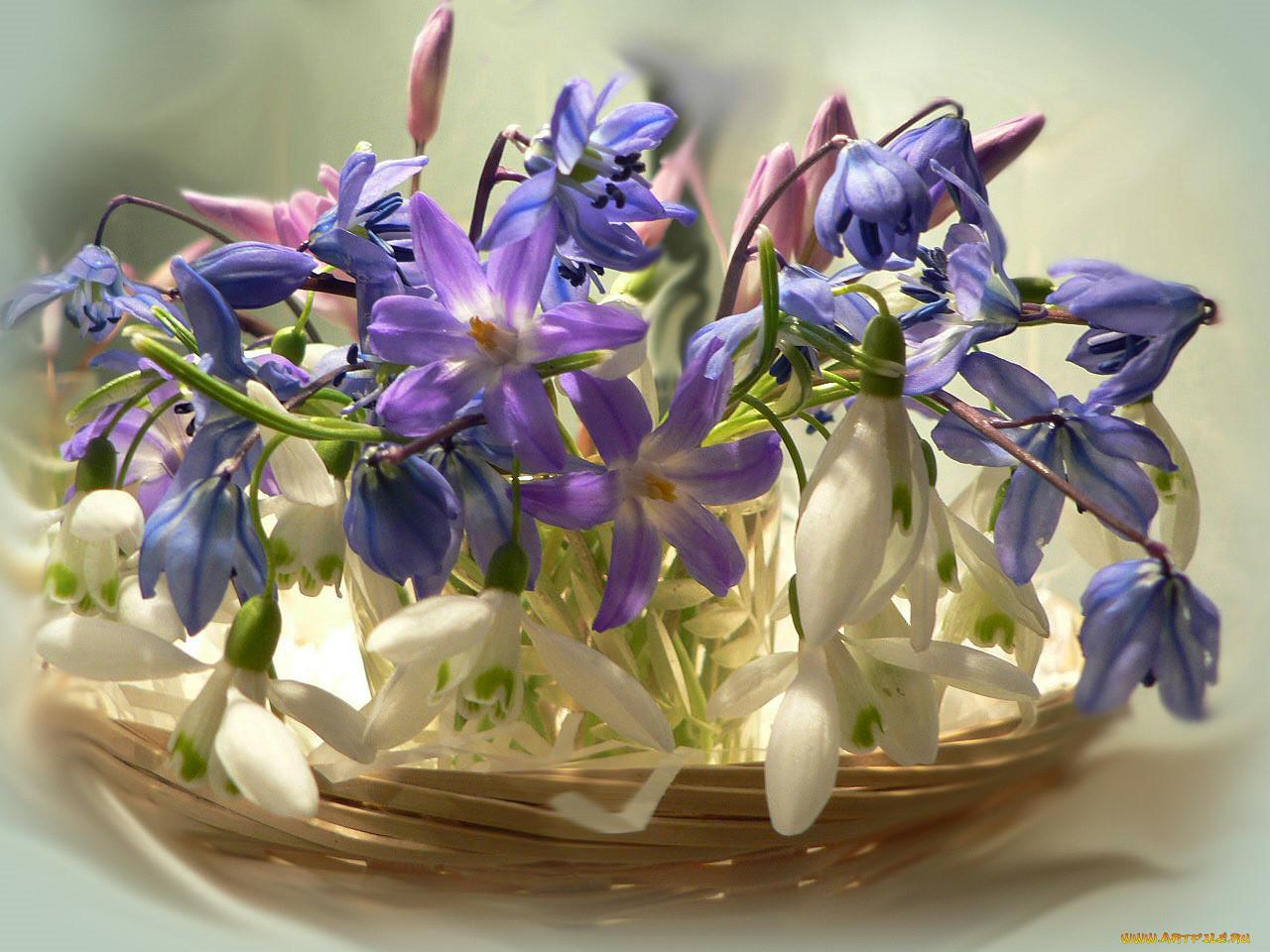 Открытки с днем рождения весенние цветы что